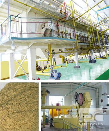 20-1000T/D Rice bran oil pretreatment, extraction, and refining production line