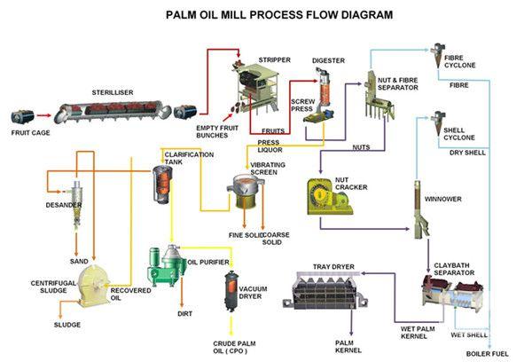 machine presse à huile de palme wwwuit