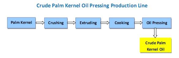 brute Machine presse à huile de palmiste