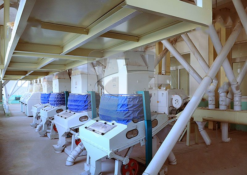 corn germ oil extarction processing line