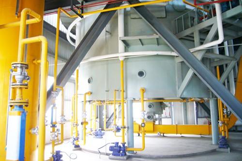 Machine D'extraction D'huile De Germe De Maïs
