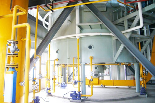 Máquina de extracción de aceite de germen de maíz