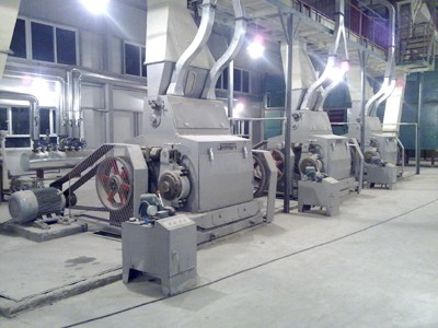 Corn Germ Pretreatment and Oil Pressing Machine