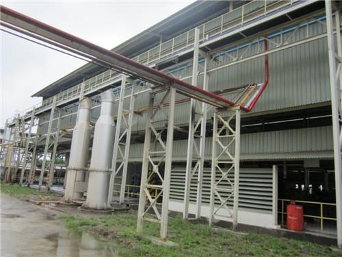 Palm Fruit Oil Pressing Machine